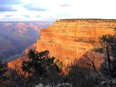 Photograph - Grand Canyon 76 by Will Borden