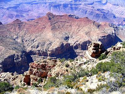 Photograph - Grand Canyon 78 by Will Borden