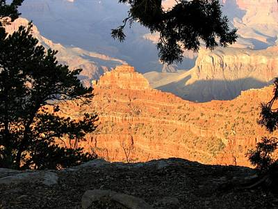 Photograph - Grand Canyon 80 by Will Borden