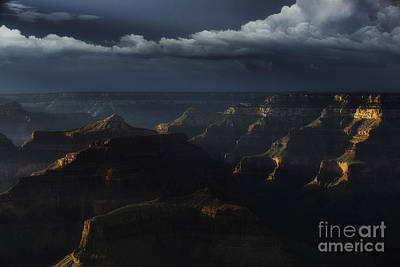 Grand Canyon 9 Art Print by Richard Mason
