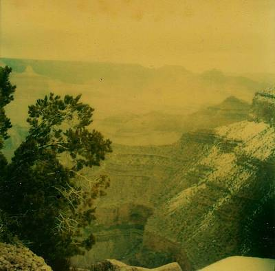 Photograph - Grand Canyon by Amazing Photographs AKA Christian Wilson