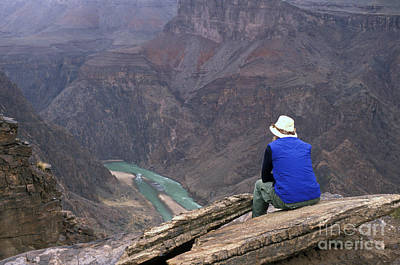 Photograph - Grand Canyon And Colorado River by Jim West