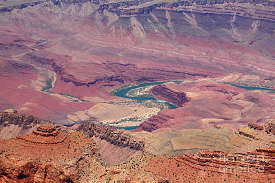 Photograph - Grand Canyon And Curvy Colorado River by Debra Thompson