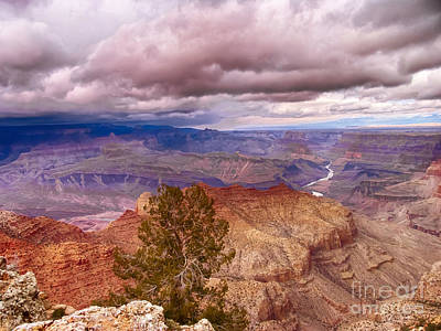 Photograph - Grand Canyon- Approaching Storm by David Doucot