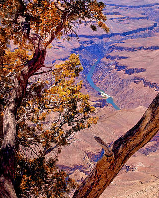 Photograph - Grand Canyon Autumn by Wayne Wood