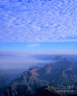Grand Canyon Blues Art Print by Alex Cassels