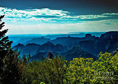 Photograph - Grand Canyon Bright Angel by Bob and Nadine Johnston