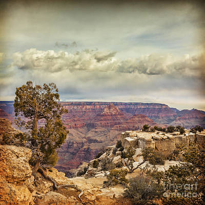 Grand Canyon Art Print by Colin and Linda McKie