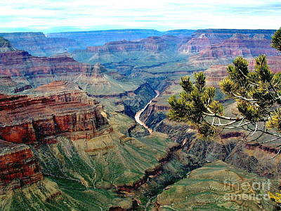Photograph - Grand Canyon Colorado River by Marilyn Smith