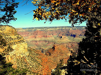 Photograph - Grand Canyon Framed By Nature by John Potts