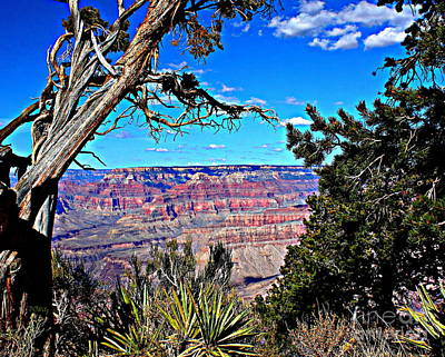 Photograph - Grand Canyon Hd by Patrick Witz