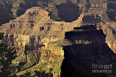 Photograph - Grand Canyon Hermit Point Sunset by Bob and Nadine Johnston