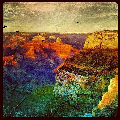 University Photograph - Grand Canyon by Jill Battaglia