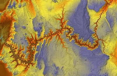 Grand Canyon Digital Art - Grand Canyon Map Art by Paul Hein