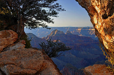 Photograph - Grand Canyon National Park At Angels Point Trail by Schwartz Nature Images