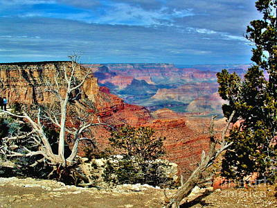 Photograph - Grand Canyon National Park by Marilyn Smith