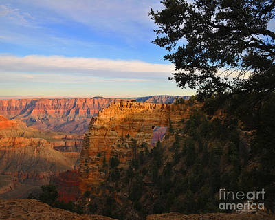 Photograph - Grand Canyon North Rim Angels Window Photography by Nature Scapes Fine Art