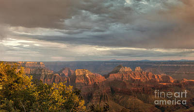 Photograph - Grand Canyon North Rim Sunset by Sandra Bronstein