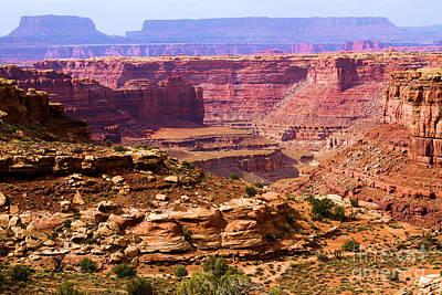 Photograph - Grand Canyon Of Utah by Adam Jewell