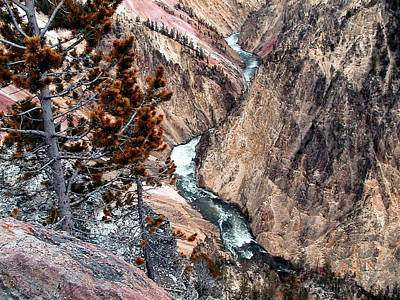 Grand Canyon Of Yellowstone 5 Art Print