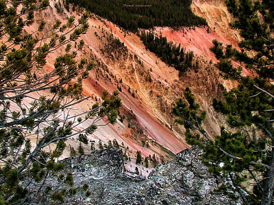 Grand Canyon Of Yellowstone 6 Art Print