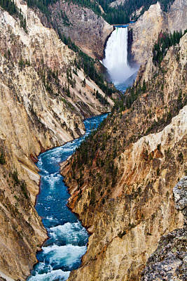 Grand Canyon Of Yellowstone Art Print by Bill Gallagher