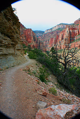 Photograph - Grand Canyon Or Bust by Jon Emery
