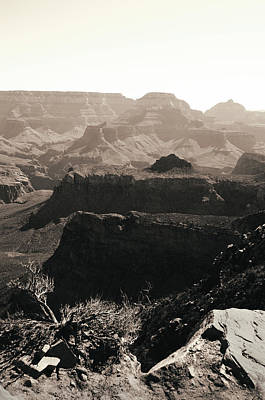 Photograph - Grand Canyon Panorama From The South Rim by Arkady Kunysz