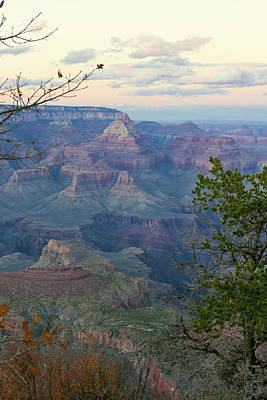 Photograph - Grand Canyon Pastels 2 by Lou Ford