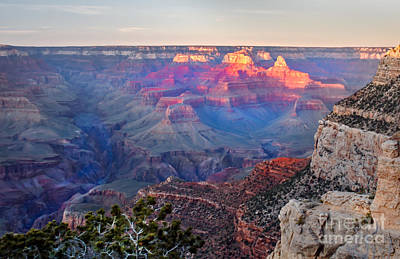 Photograph - Grand Canyon Pre Twilight by Robert Bales