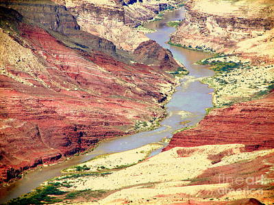Photograph - Grand Canyon River View by John Potts