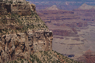 Photograph - Grand Canyon by Scott Sanders
