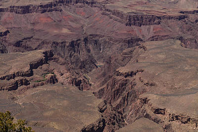Photograph - Grand Canyon South Rim Central by John Johnson