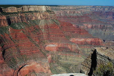 Photograph - Grand Canyon South Rim by Robert  Moss