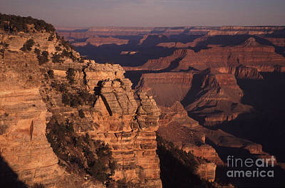 Art Print featuring the photograph Grand Canyon Sunrise by Liz Leyden