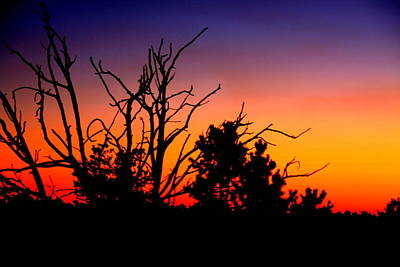 Photograph - Grand Canyon Sunset by Aidan Moran