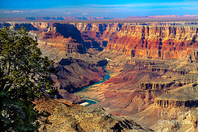 Colorado River Photograph - Grand Canyon Sunset by Robert Bales