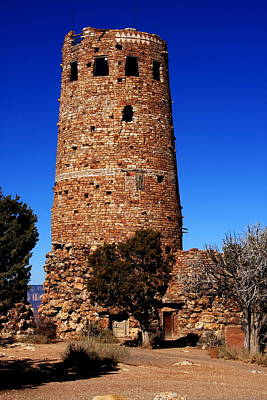 Photograph - Grand Canyon Tower Arizona by Aidan Moran