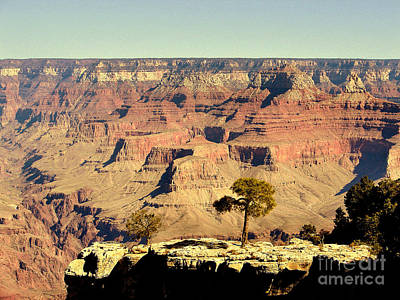 Photograph - Grand Canyon Usa by John Potts