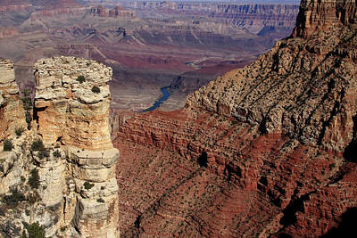 Photograph - Grand Canyon View by Aidan Moran