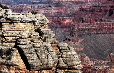 Grand Canyon View Art Print