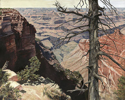 Canyon Painting - Grand Canyon View Weathered Tree Right Side  by Don  Langeneckert