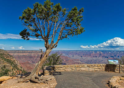 Photograph - Grand Canyon Viewing by John M Bailey