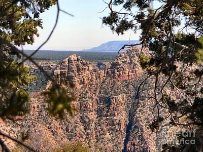 Photograph - Grand Canyon Vista 4 by Audrey Van Tassell