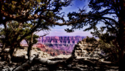 Photograph - Grand Canyon Vista by Ellen Heaverlo