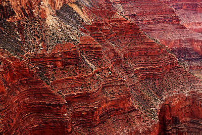 Photograph - Grand Canyon Wall by Daniel Woodrum