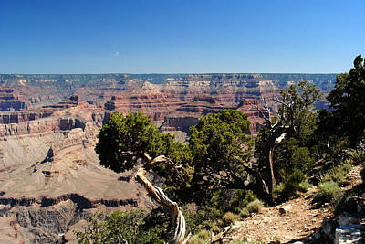 Photograph - Grand Canyon West by Robert  Moss