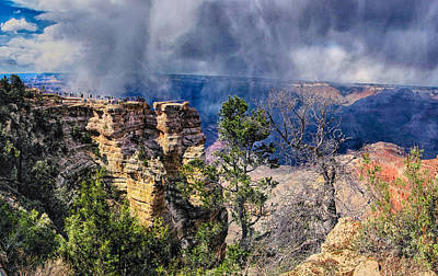 Photograph - Grand Canyon X by C H Apperson