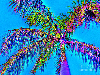 Photograph - Grand Daddy Palm by Keri West