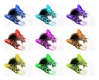 Andee Design Animals Photograph - Grand Kitty Cuteness 3 Pop Art 9 by Andee Design